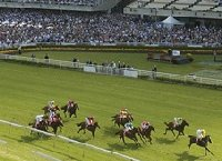 Royal Randwick Racecourse | New South Wales Australia