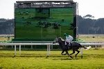 Horse racing in Italy