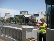 View of Las Vegas Blvd.