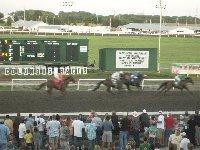 Ag park columbus ne horse racing