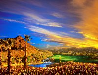 Caesars palace resort hotel casino las vegas for Garden of gods pool oasis