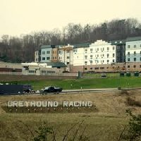 Tri-state greyhound park and casino ball games for 2 year olds